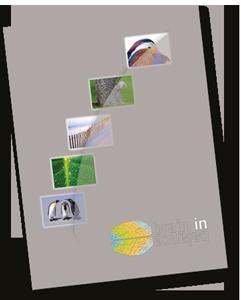 BiB-Presentatiemap